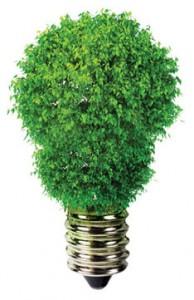 green blub 194x300 7 Things You Didnt Know About Energy Saving Light Bulbs